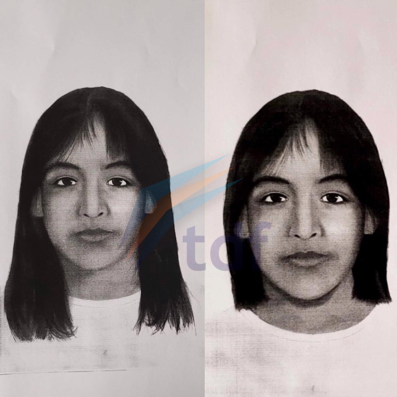 Actualización del rostro de Sofía Herrera